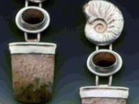 fossil-ammonite-dinobone-agate